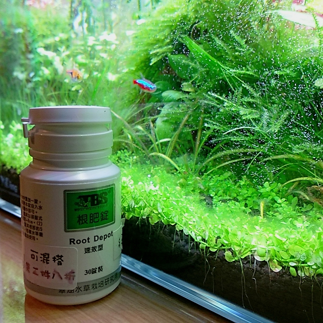 水草液肥、根肥、營養劑錠介紹