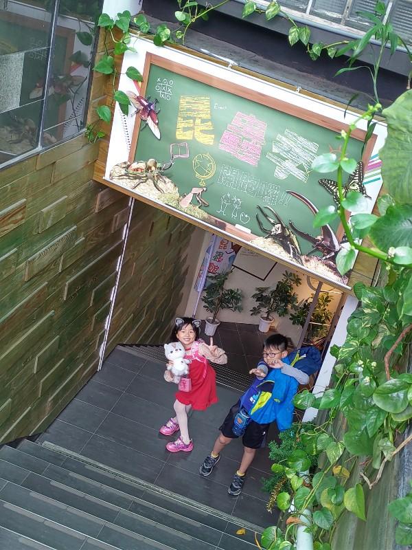 與昆蟲的親密接觸!台北有個台灣昆蟲館