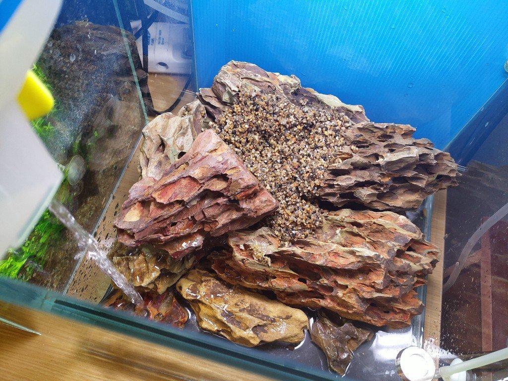 無底沙水草缸日本珍珠草配虎皮石