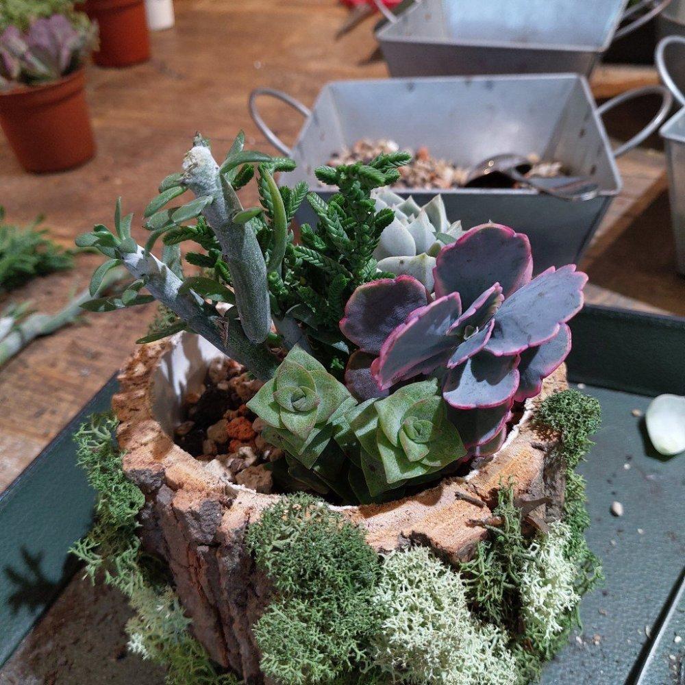 參加有肉 Succulent & Gift 手作課程